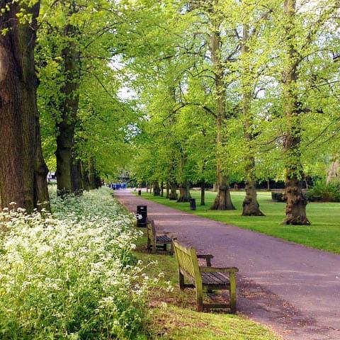 Serenity in parks