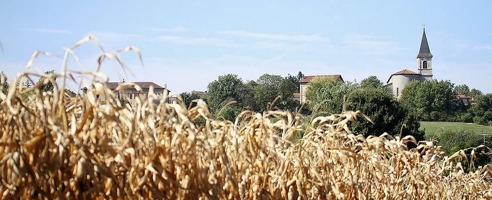 Isere Countryside